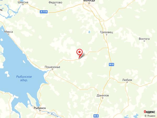 деревня Шульгино на карте