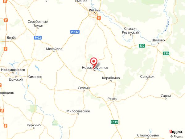 деревня Елизаветино на карте