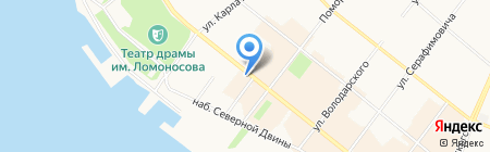 Кот и пес на карте Архангельска