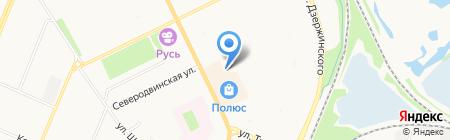 Муравей на карте Архангельска