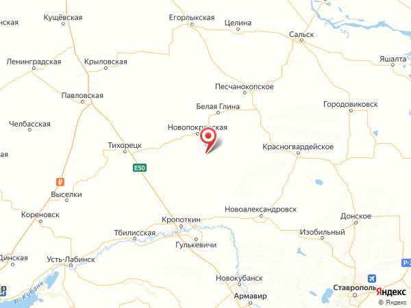 поселок Новопокровский на карте