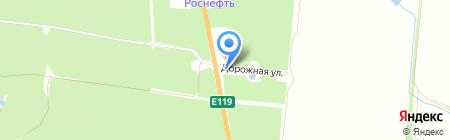 Лесная сказка на карте Тамбова