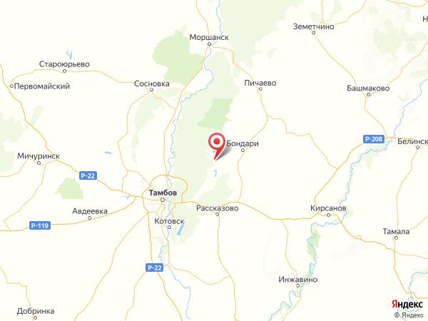 поселок Земетчино на карте