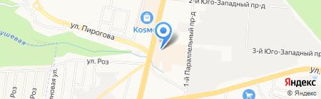 Аллигатор на карте Ставрополя