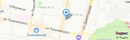 Осьминожка на карте Ставрополя