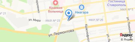 Жираф на карте Ставрополя