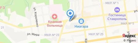 Цветочная сказка на карте Ставрополя
