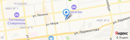 Элита ночь на карте Ставрополя