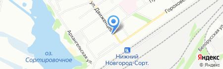 Тигренок на карте Нижнего Новгорода
