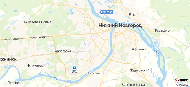 49 автобус в Богородске