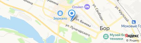 Torgnn.ru на карте Бора