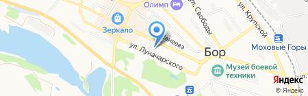 Центр праздников и путешествий на карте Бора