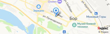 Партнер на карте Бора