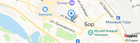 Магазин продуктов на ул. Ленина на карте Бора