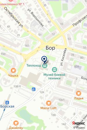 БОРСКАЯ на карте Бора