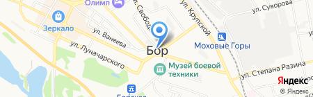 Дарья на карте Бора