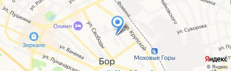 У Петровича на карте Бора