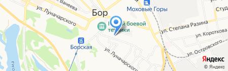 Ладья на карте Бора