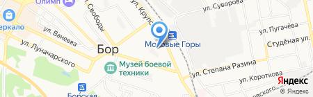 Магазин на карте Бора