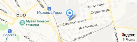 Борский трубный завод на карте Бора
