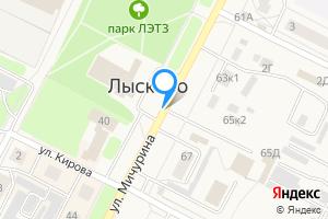 Двухкомнатная квартира в Лысково Мичурина