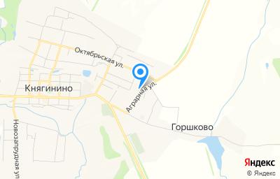 Местоположение на карте пункта техосмотра по адресу Нижегородская обл, г Княгинино, ул Аграрная, зд 6/1