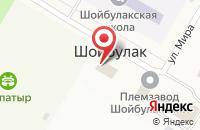 Схема проезда до компании Администрация Шойбулакского сельского поселения в Шойбулаке