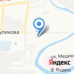 Барс на карте Астрахани