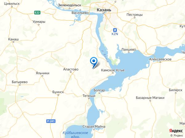 деревня Челны на карте