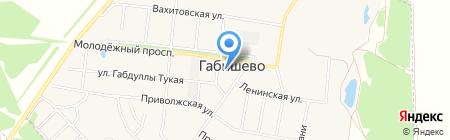 Одуванчик на карте Габишево