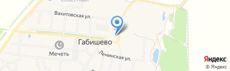 Алан на карте Габишево