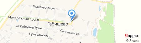 Тонус на карте Габишево