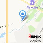Живое дерево на карте Кирова
