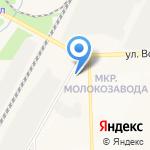 Арт-гербера на карте Кирова