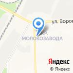 Хвостатый друг на карте Кирова