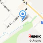 Ладошки на карте Кирова