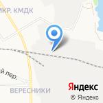 Перспектива Лес на карте Кирова