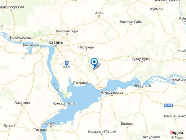 село Татарский Янтык на карте