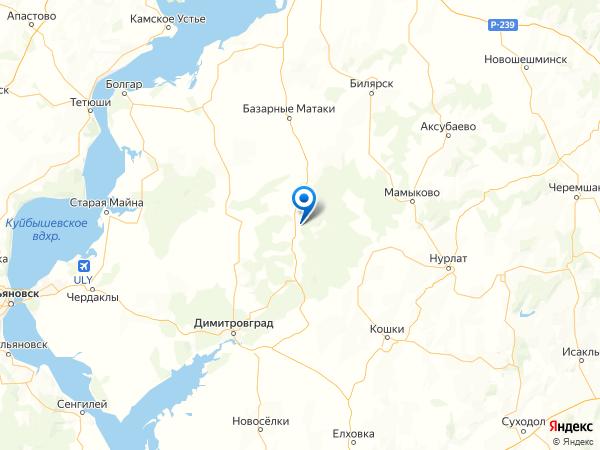 село Каракули на карте