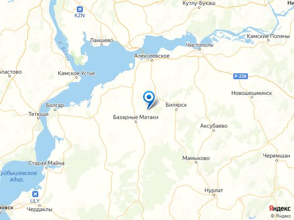село Старые Челны на карте