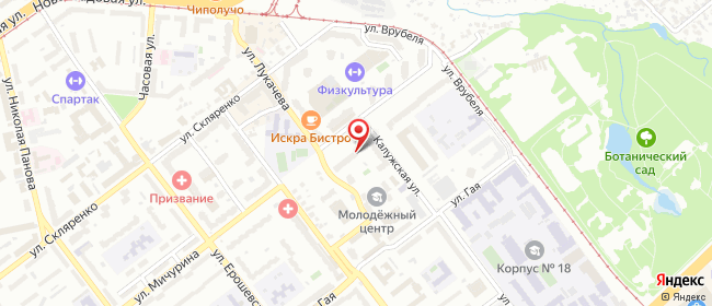 Карта расположения пункта доставки Самара Мичурина в городе Самара