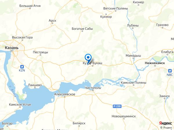 село Козяково-Челны на карте