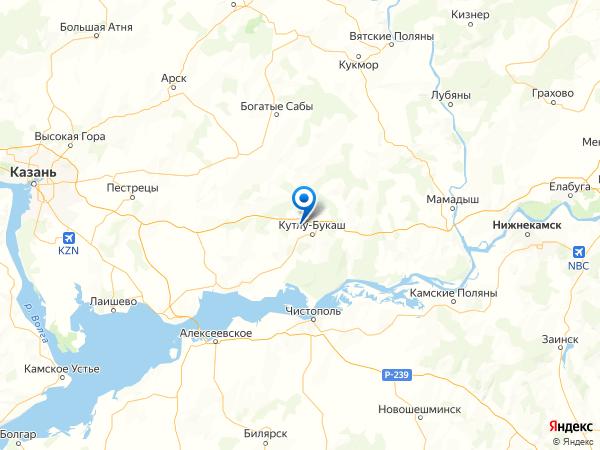 село Уреево-Челны на карте