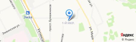Живая пинта на карте Сыктывкара
