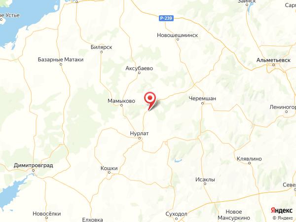 село Русское Богдашкино на карте