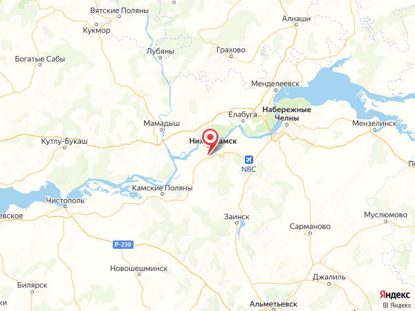 село Большое Афанасово на карте