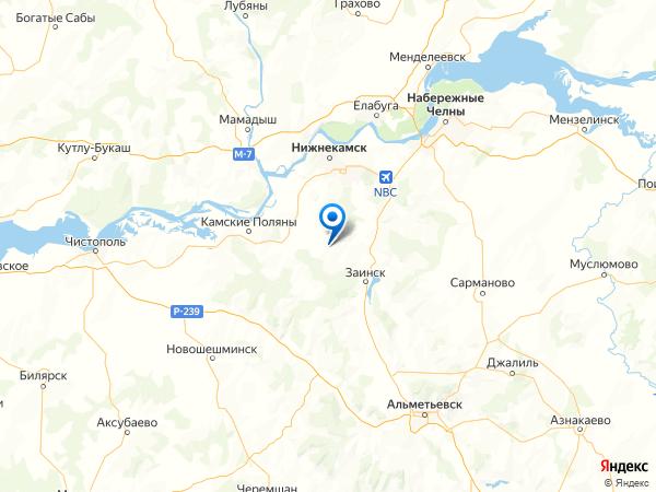 деревня Средние Челны на карте
