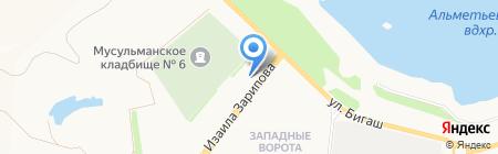 Бонсай на карте Альметьевска
