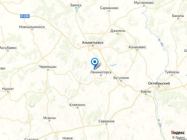село Алешкино на карте