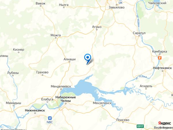 деревня Ляли на карте